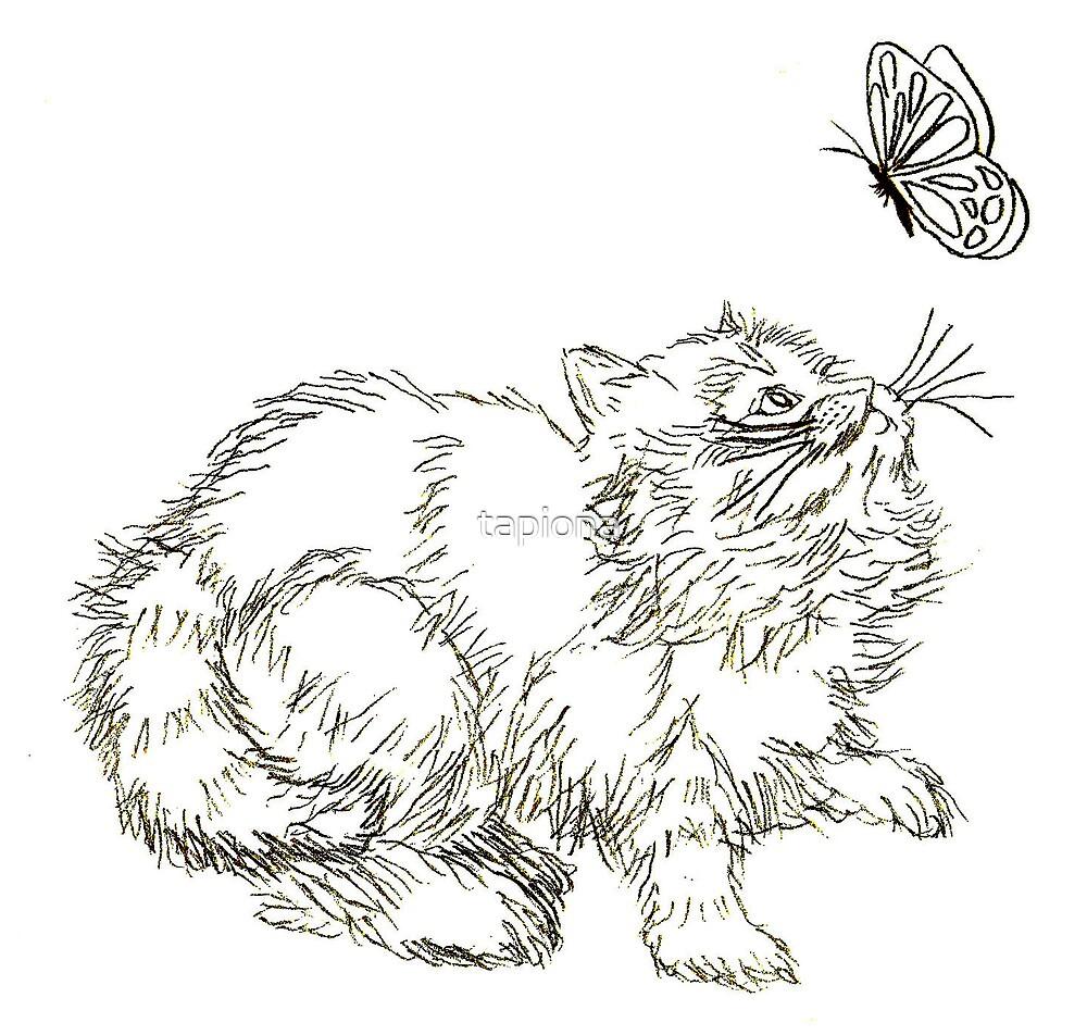 Playful Persian Kitten by tapiona