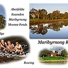 Maribyrnong River by Darren Stones