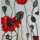 Wild poppies by samcannonart
