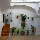 Typical Andalucian Patio by fototakerTony