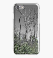 Warrumbungles iPhone Case/Skin