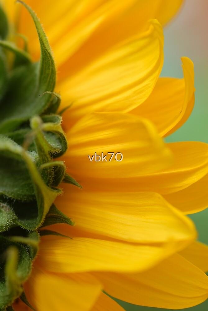 Hello Sun! by vbk70