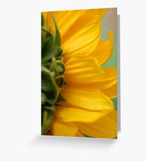 Hello Sun! Greeting Card