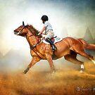 Dorset Hunter/Jumper: No 158 by isabelleann