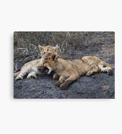 He's Ok, He's My Brother ! Canvas Print