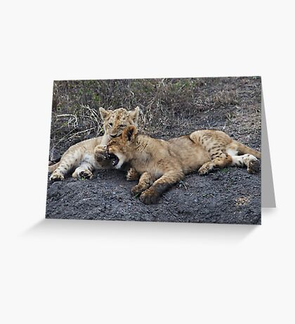 He's Ok, He's My Brother ! Greeting Card