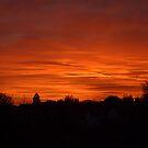 Jovian Sunset by Paul  Eden