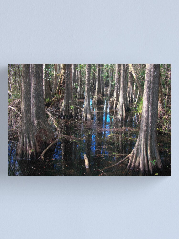 Alternate view of Cypress Canvas Print
