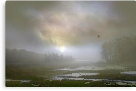 Mystical Morning by Igor Zenin