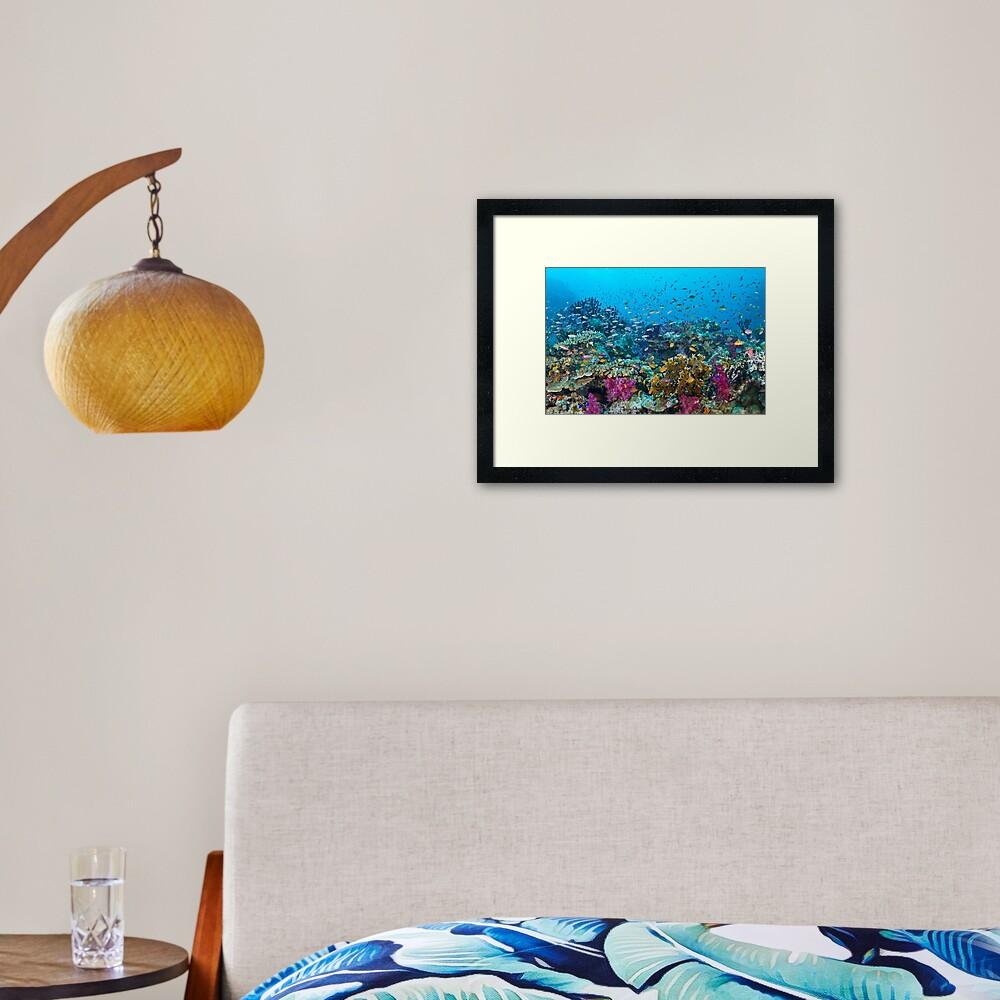 Fantasea Reef Framed Art Print