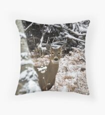 Young white-tailed doe in the snow Throw Pillow