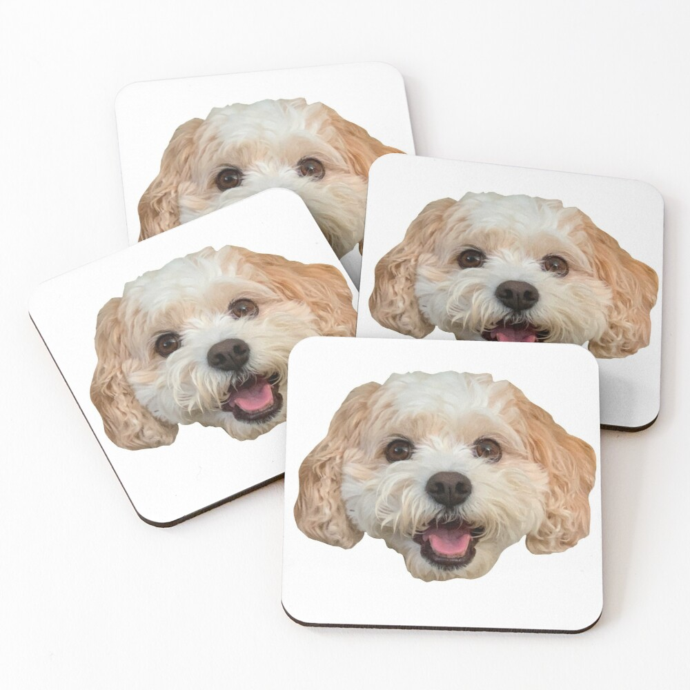Daisy Butler Coasters (Set of 4)