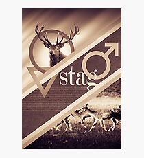 Stag Poster Photographic Print