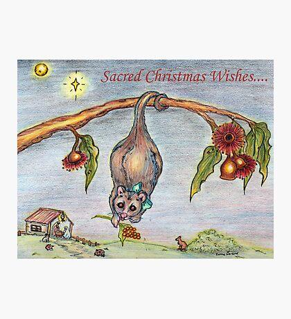 Australian Nativity Photographic Print