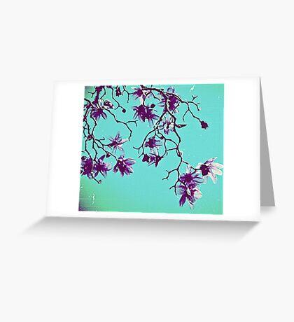 //// Greeting Card