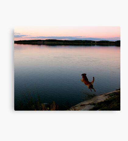 Jump for joy Canvas Print