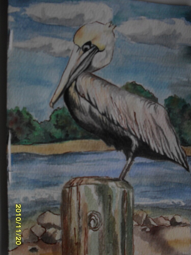 Floridian Pelican on Pappases warf by lynnieB