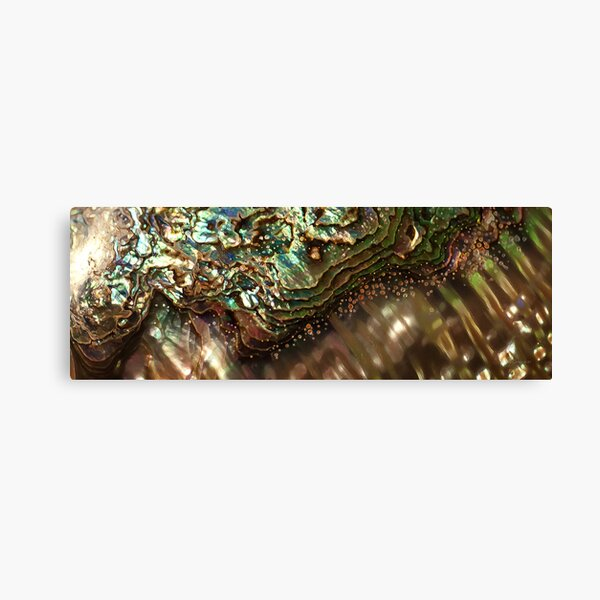 Treasures Await in a Jeweled Sea Canvas Print