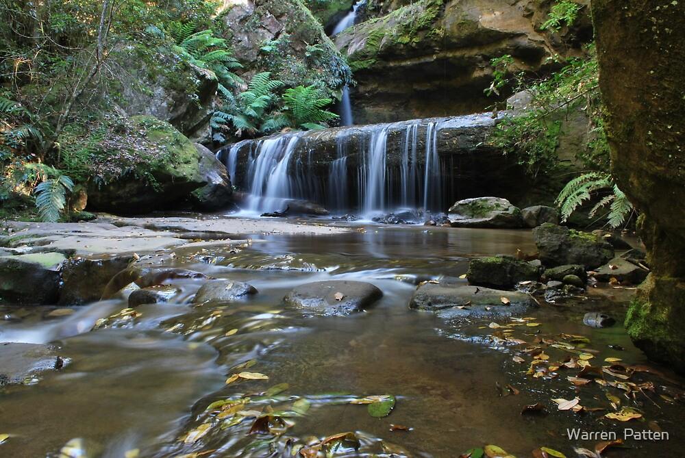 Trinity Falls.Blackheath. 21-11-10 by Warren  Patten