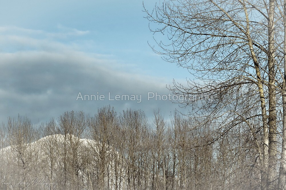 Calm after the Storm by Annie Lemay  Photography