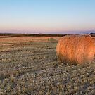 A lone hay bale by Josef Pittner