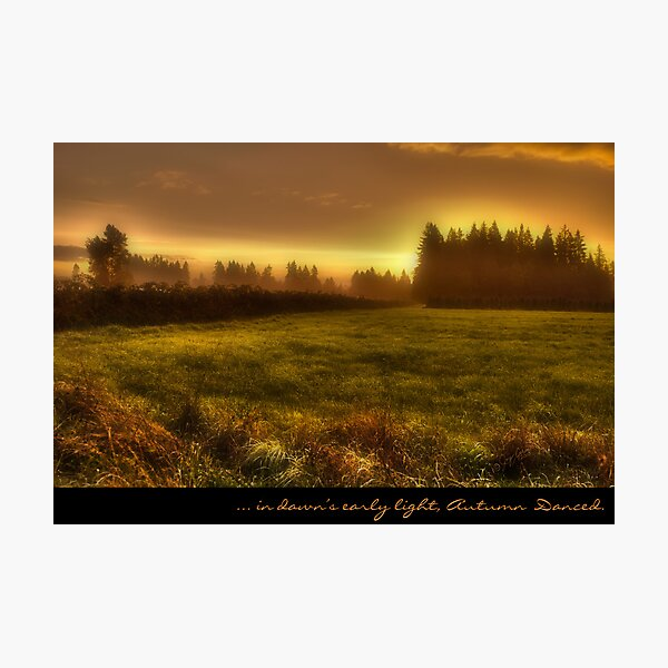 ... in dawns early light, ... Autumn Danced Photographic Print