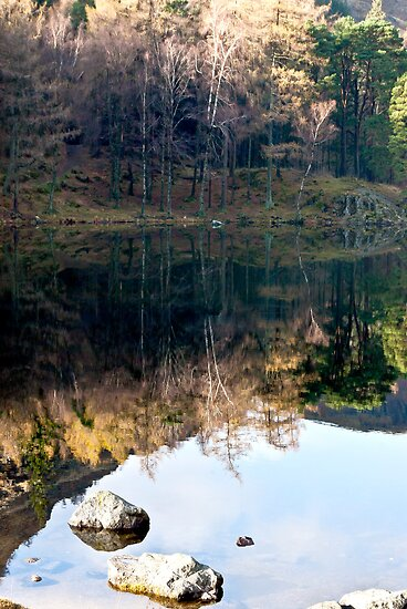 Reflections at Blea Tarn by Trevor Kersley
