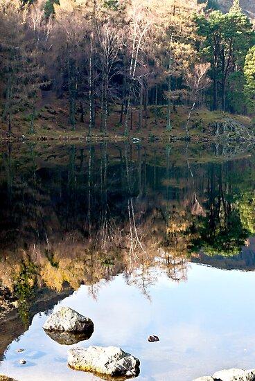 Reflections at Blea Tarn by Trevor Kersley