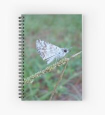 Spring Azure butterfly with an ant Spiral Notebook