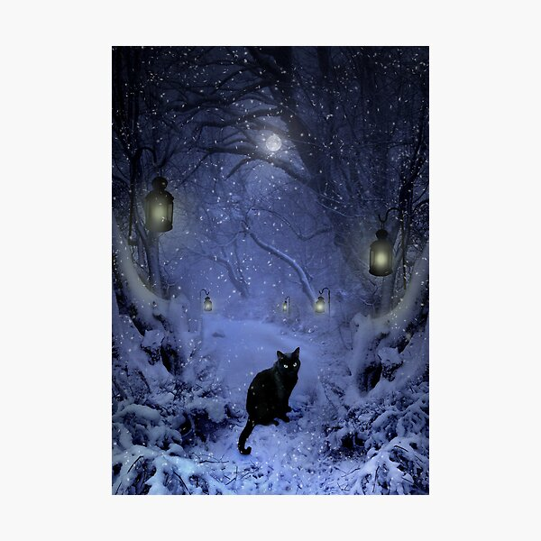 Frostar Midnight Photographic Print