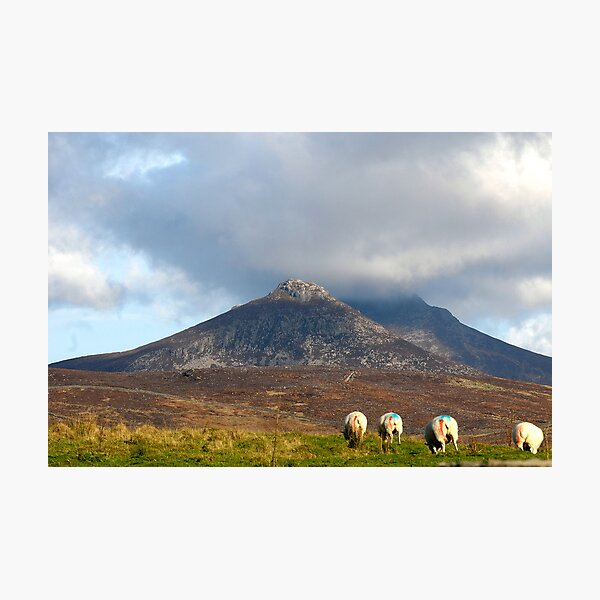 MOURNE MOUNTAINS Photographic Print