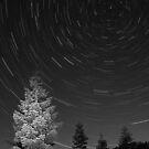 High Sierra Night by Justin Baer