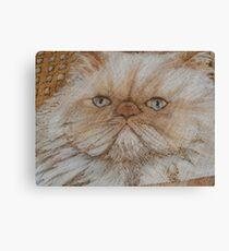 kitty kaboodle Canvas Print