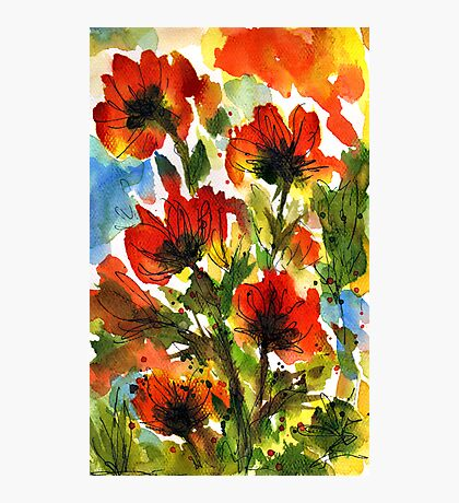 Tuscan Poppies Photographic Print