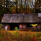 Sugar Shack by BigD