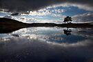 Kelly Hall Tarn - Cumbria by SteveMG