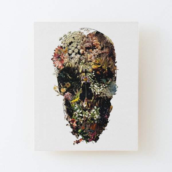 Smyrna Skull Wood Mounted Print