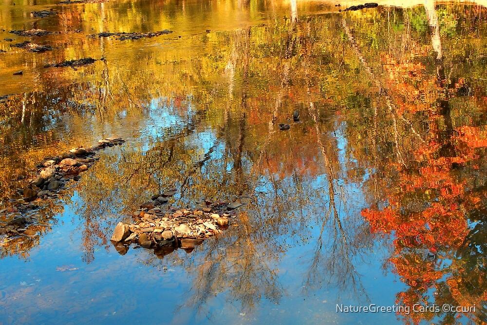 Autumn Ripples by NatureGreeting Cards ©ccwri