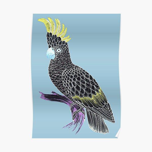 Black Cockatoo Poster