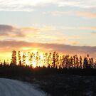 Bayly Township Sunset No.2  by Christopher Clark
