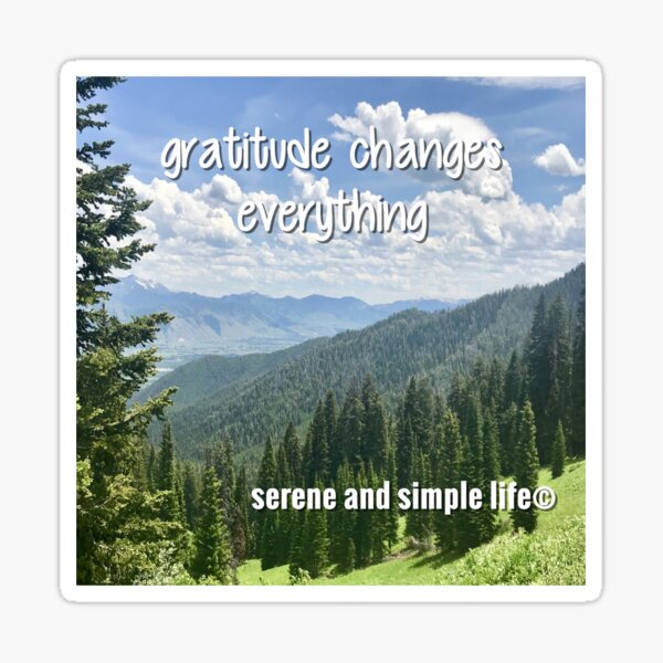 gratitude changes everything accent pillow Sticker