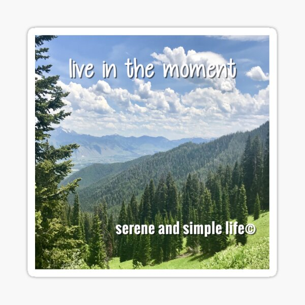 live in the moment accent pillow Sticker