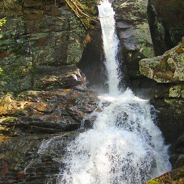 Kent falls by chinet