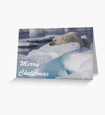 Polar Bear - Merry Christmas Card Greeting Card