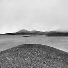 Winter Storm by Vendla