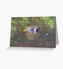Gator! Greeting Card