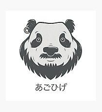Panda Bear(d) Photographic Print