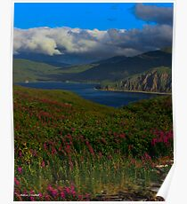Island In The Bering Sea - Unalaska, Alaska Poster
