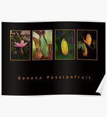 Banana Passionfruit Poster