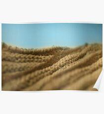 Désert tricoté - Knitted desert Poster